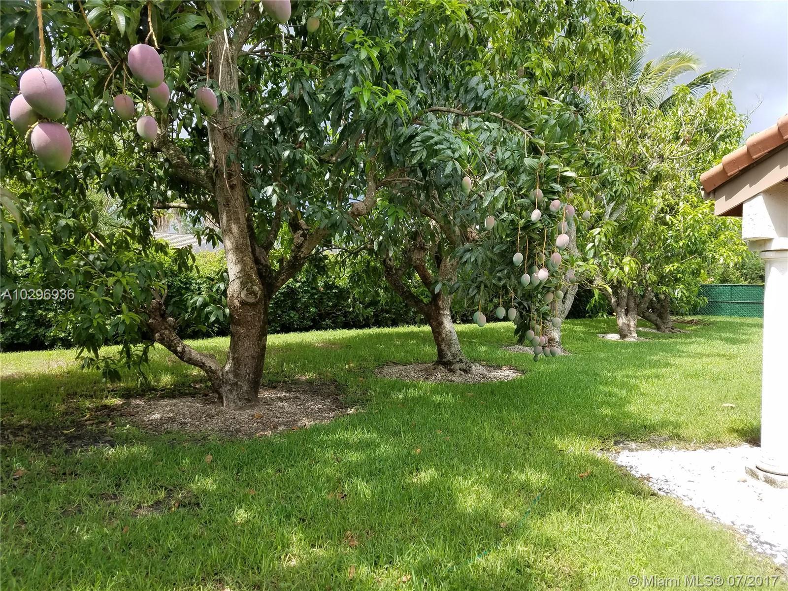8226 Sw 171 Te, Palmetto Bay FL, 33157